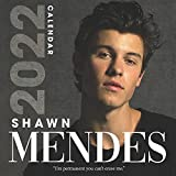 2022 Calendar: Shawn Mendes 18-month Calendar 2022 from Jul 2021 to Dec 2022 in mini size 8.5x8.5 inch