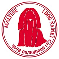 マルチーズ ステッカー Cパターン グッズ 名前 シール デカール 犬 いぬ イヌ シルエット 給油口 ステッカー(ゴールド)
