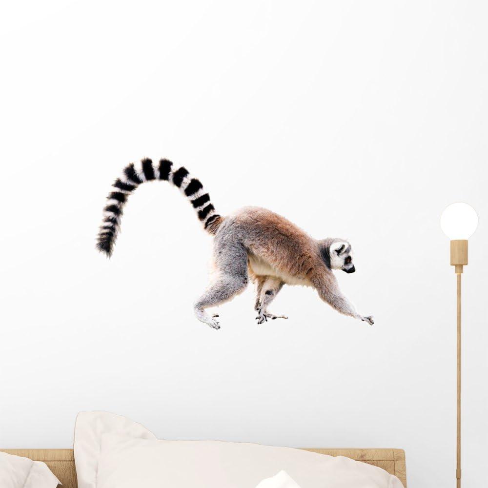 Ring tailed lemur  Original Drawing  Jungle wall decal