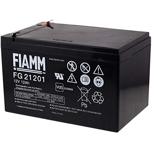 Fiamm batería para sistemas solares elevadores Reinigunsmaschinen alarma de emergencia 12 V 12Ah, 12 V, plomo-ácido