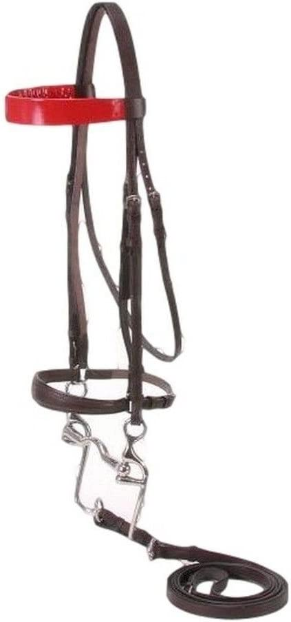 SilverFox Walking Horse At the price of surprise Bridle Our shop most popular Blue Full Brown