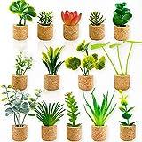 JUSTDOLIFE Plant Fridge Magnets-14 Pack Mini...