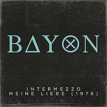 Intermezzo / Meine Liebe (1976)