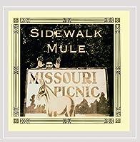Missouri Picnic