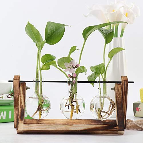 Lampenvase mit Vintage Holzständer und Metall-Drehstab für Hydroponics Pflanzen Desktop Glas Pflanzgefäß für Heimtextilien (3 Terrarien)