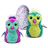 Hatchimals - Hatching Egg - Interactive Creature - Penguala - Pink/Teal Egg by Spin Master