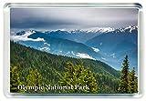J453 Olympic National Park Jumbo Refrigerator Magnet US - American Travel Fridge Magnet USA