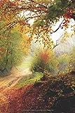 Herbst Journal: Notizbuch / Tagebuch für Ideen, Gedichte, Zitate und mehr | Paperblank mit leeren Seiten A5+