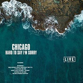 Hard to Say I'm Sorry (Live)