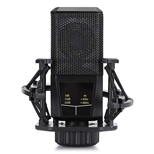 Garsentx Kondensator-Aufnahmemikrofon, Mini-Podcast Live-Streaming-Studio Nierenmikrofon für Computer, YouTube, Spiele, schwarz