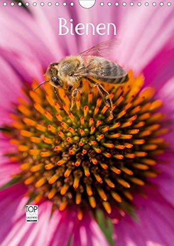 Bienenkalender (Wandkalender 2021 DIN A4 hoch)
