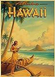 SGDDGF USA Stadt Vintage Poster Hawaii NaPali Design