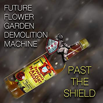 Past the Shield