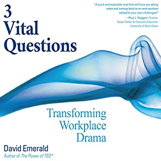 3 Vital Questions: Transforming Workplace Drama audiobook cover art