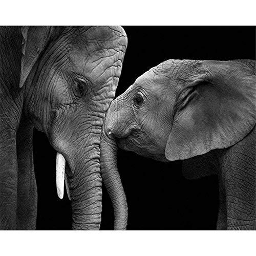 HQHff Fondo Negro Elefante y bebé Elefante,Puzzles Adultos 1000 Piezas 75x50cm,3D Puzzles de Madera Adultos Regalo de Juguete Educativo para niños