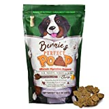 Bernie's Perfect Poop Digestion & General Health Supplement for Dogs: Fiber, Prebiotics, Probiotics & Enzymes Relieve Digestive Conditions, Optimize Stool, and Improve Health (Cheddar Cheese, 12.8 oz)