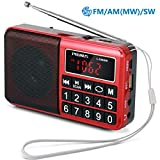 PRUNUS L-238SW Radio Portable Rechargeable FM/AM(MW)/SW USB Micro-SD et Lecteur Mp3 intégré. Clavier du Tableau de...