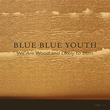 We Are Wood and Likely to Burn