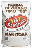 """Manitoba Mehl Le 5 Stagioni 10kg - Weizenmehl Typ 00, Farina di grano tenero tipo """"00"""""""