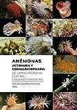 Anémonas (Actiniaria y Corallimorpharia de la Macaronesia central: Canarias y Madeira
