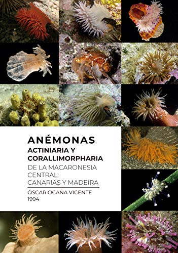 Anémonas (Actiniaria y Corallimorpharia de la Macaronesia central: Canarias y Madeira (Spanish Edition)