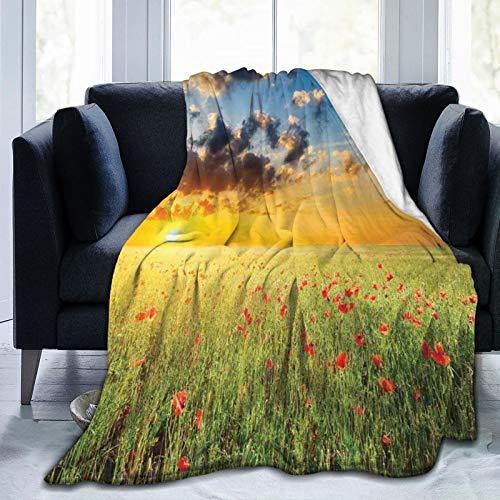 Manta mullida, refrescante con vista al cielo con hierba y amapolas contra el horizonte del atardecer, ultra suave, manta para dormitorio, cama, TV, manta para cama de 127 x 101 cm