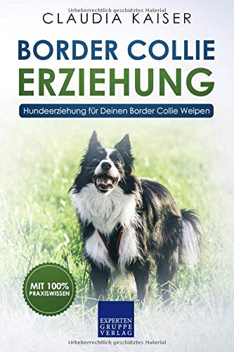 Border Collie Erziehung: Hundeerziehung für Deinen Border Collie Welpen (Border Collie Band, Band 1)