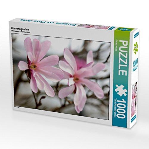 CALVENDO Puzzle Sternmagnolien 1000...