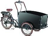 Elektro - Transportrad Voozer schwarz gratis Winterset, fertig montiert