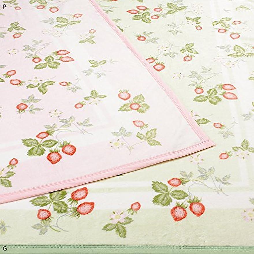 肘前件ファントム東京西川 ウェッジウッド/WEDGWOOD 綿毛布 シングル 日本製  (グリーン)