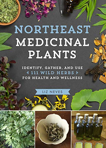 Northeast Medicinal Plants: Identify, Harvest, and Use 111 Wild Herbs for Health and Wellness (English Edition)
