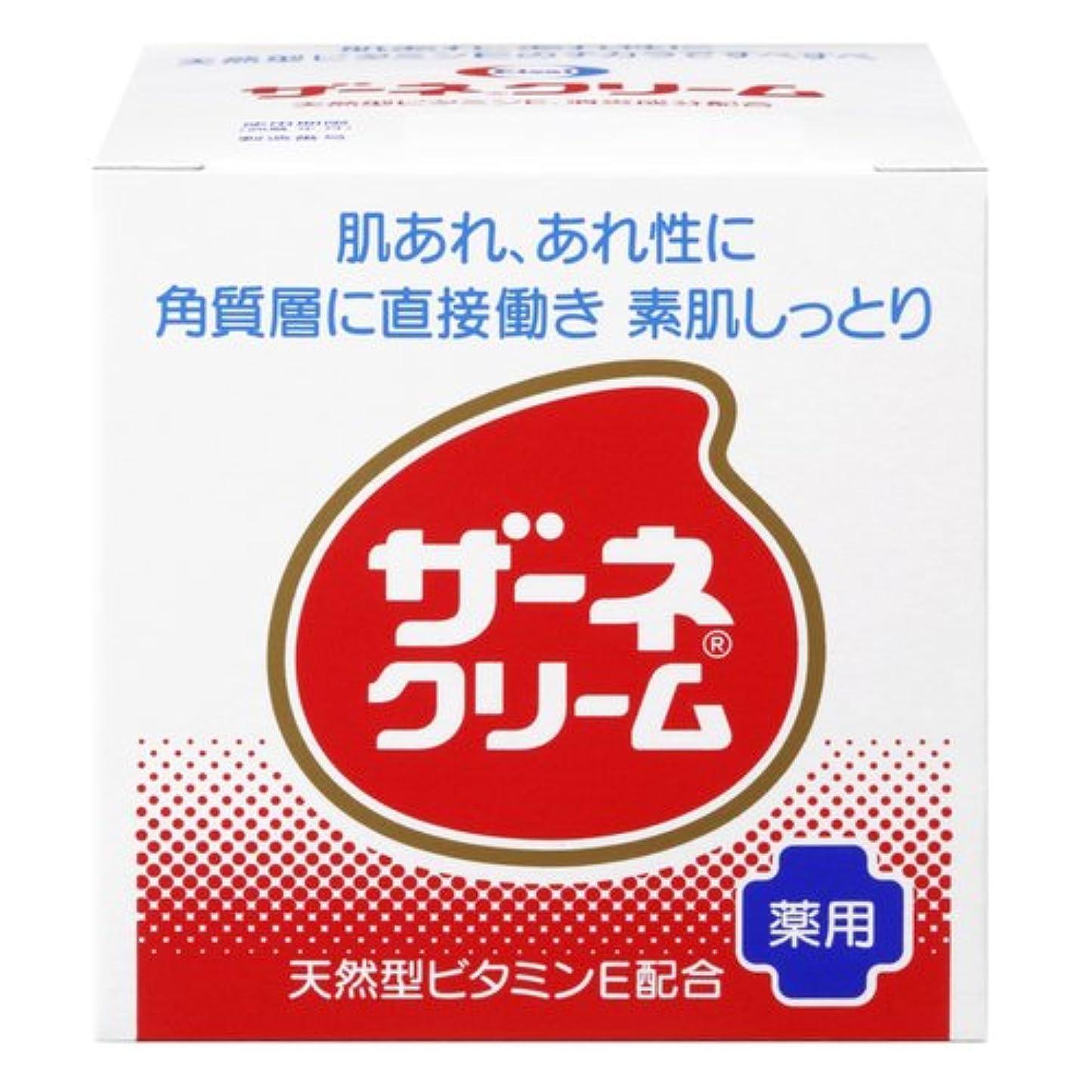 汚す食事銀行ザーネクリーム 115g [ヘルスケア&ケア用品]