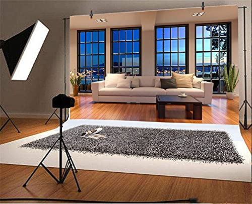 AOFOTO 8x6ft Business Office French Sash Window Backdrop Living Room Sofa Photography Background Interior Casement Work at Home Nightscape Modern Flat Furniture Apartment Decor Residence Villa Props
