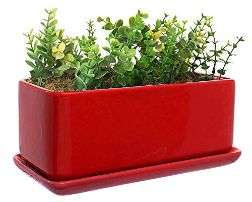 VanEnjoy 10 Inch Red Rectangle Ceramic Succulent Planter Pot Decorative Cactus Plant Pot Flower Container with Ceramic Tray