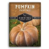Survival Garden Seeds - Fairy Tale Pumpkin Seed for Planting - Packet with Instructions to Plant and Grow in Your Home Vegetable Garden - Non-GMO Heirloom Variety