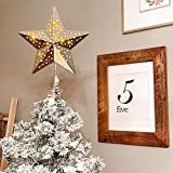 Christmas Tree Toppers 25 LEDs Lighted Christmas Decorations 9.4 inches, Gold
