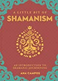 A Little Bit of Shamanism: An Introduction to Shamanic Journeying (Little Bit Series)