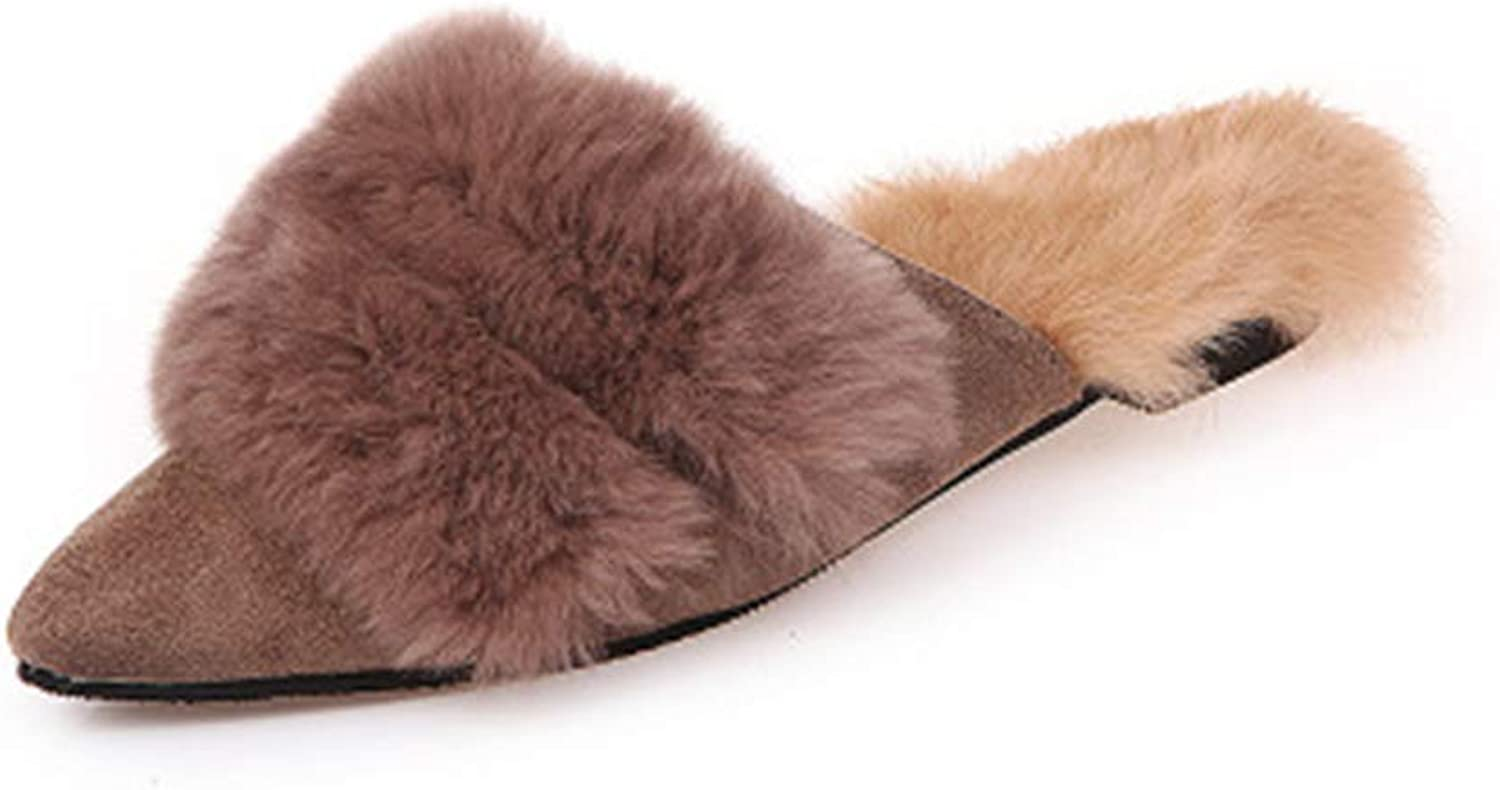 Cloudless Women's New Fur Slippers Pointed Toe Flats