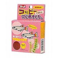 (まとめ買い)イトスイ アカヒレの餌 コッピーはじめました 5g 【×10】