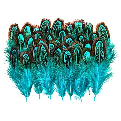 Piokio 50 pcs Natural Lake Blue Pheasant Feathers in Bulk 2-3inch(5-7 cm) for Dream Catcher Crafts Decoration