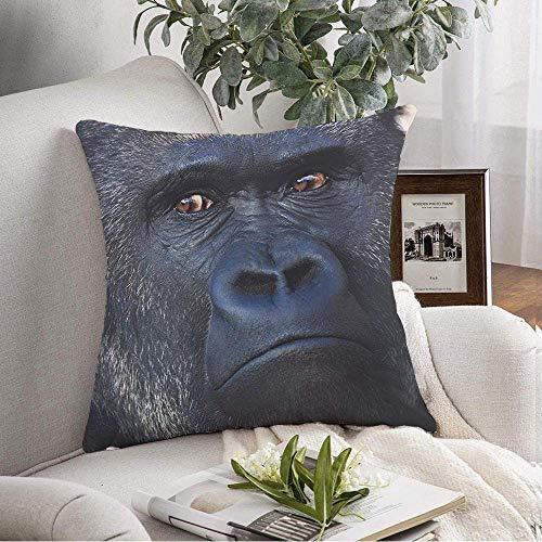 Funda de almohada decorativa cuadrada con cara de primate, espalda plateada, mono, gorila, gran peligro, macho, animales severos, vida silvestre, naturaleza, funda de cojín suave para dormitorio, sofá