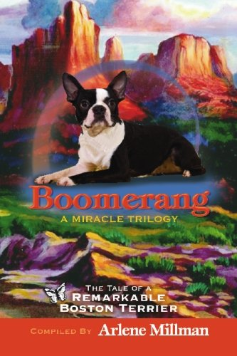 Boomerang - A Miracle Trilogy: The tale of a remarkable Boston Terrier