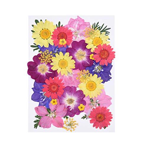 Las flores vívidas y hermosas son un excelente material de bricolaje. Adecuado para: hogar, mesa, bodas, fiestas, decoración de salas de reuniones. Escena de aplicaciones: oficina, ocio, dormitorio, sala de estar, mesa de café, alféizar, balcón, etc....