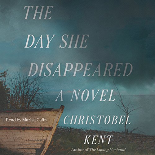 The Day She Disappeared audiobook cover art