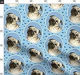 Hund, blau, Herzen, Streifen, Hunde, Mops, Möpse,
