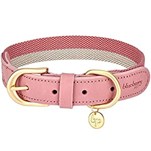 Blueberry Pet 8 Colors Soft & Comfy Genuine Leather & Polyester Combo Adjustable Dog Collar – Classic Staple Striped in Pink and Grey, Large, Neck 18″-22″