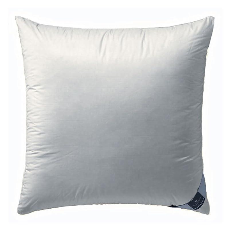 遅れ簡単なスペースBillerbeck environment 3ピロールーム - 柔らかい、白、80 x 80 cm