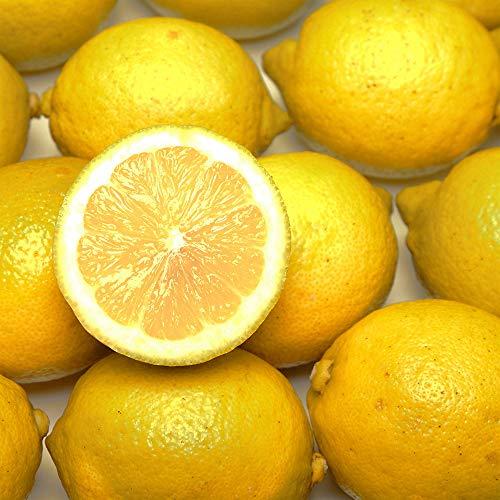 広島県レモン A品 5kg 特別栽培 (広島県 セーフティフルーツ) 農薬不使用 産地直送 ふるさと21