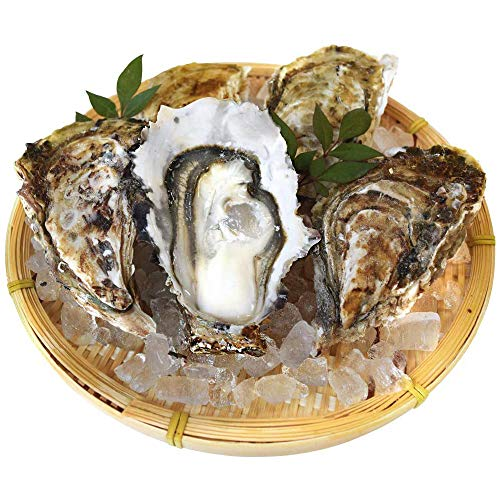 桃こまち 牡蠣 10個入 冷凍 殻付き 牡蠣 三重県 鳥羽産 加熱用 ( 発泡箱 入・牡蠣ナイフ・片手用軍手付き )海鮮 バーベキュー セット BBQ