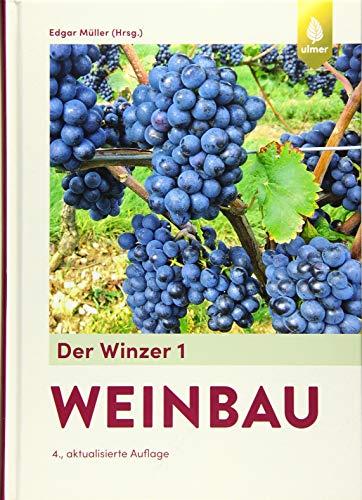 Der Winzer 1: Weinbau